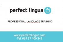 Perfect Lingua