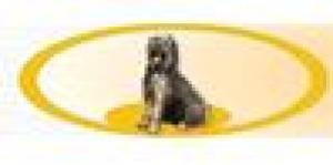 Hundekrankengymnastik Woßlick