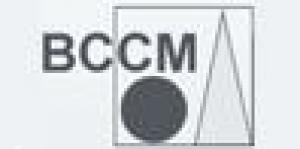 BCCM Broer Cross-Cultural Management