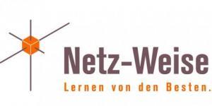 Netz-Weise