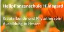 Kräuter- und Heilpflanzenschule Hildegard Kita