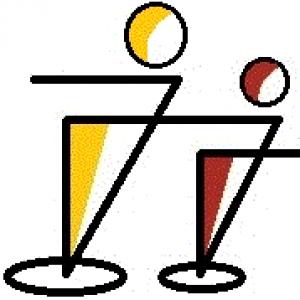 ffips- Freies Fern-Institut für Inklusionspädagogik und Sozialberufe