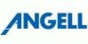 Angell Akademie Freiburg