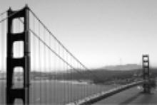 Sprache baut Brücken