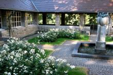 Rosengarten des SVI