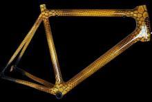 airbrush bike